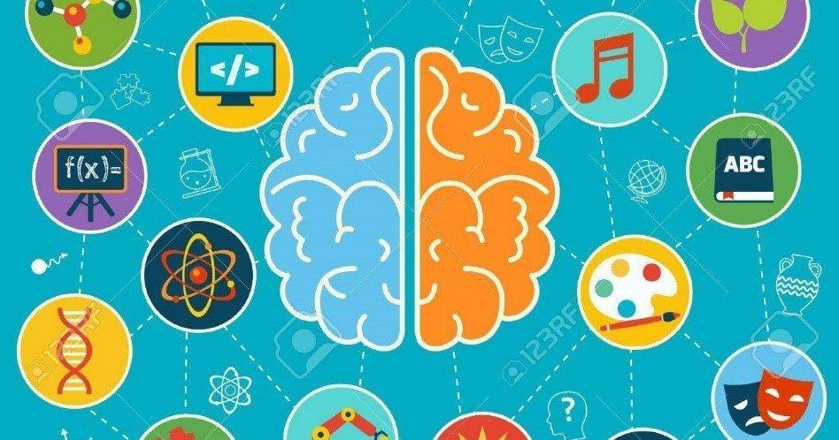 HEMISFERIO cerebral y GRAGOLOGÍA